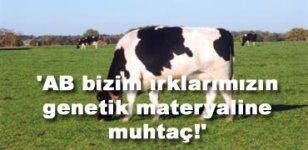 AB yasaklıyor Türkiye tüketiyor