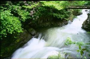 Suların talanına başlangıç : 86 yıllık 'su' kanunu değişiyor