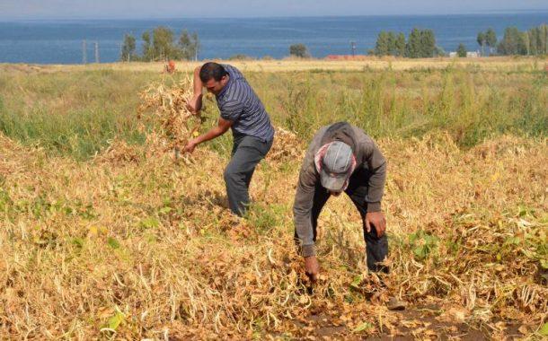 Milli Tarım Projesi ve desteklemeler / Abdullah Aysu