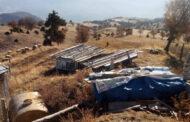 Tarım ve hayvancılık yapan köylüler elektrik bekliyor