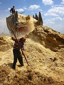 Rençber Gözüyle-2012: Tarımda dibe doğru/Abdullah Aysu