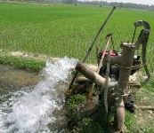 Torba kanundan çiftçinin elektrik borcuna af çıktı