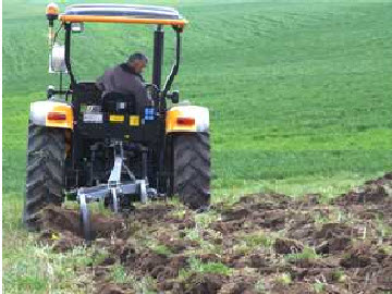 Çokuluslu şirketler yerel tohumları bitirmeye çalışıyor / Necdet Oral
