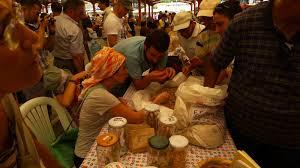 Özgür tohumlar için yerel tohum takas şenlikleri /Tayfun Özkaya