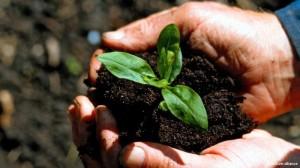 'Toprak kapatma': 54 milyon hektar toprak el değiştirdi
