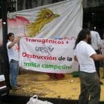 UPOV'da Şeffaflık ve Katılımcılık Konusunda Yeni Bir Dönem Başlıyor