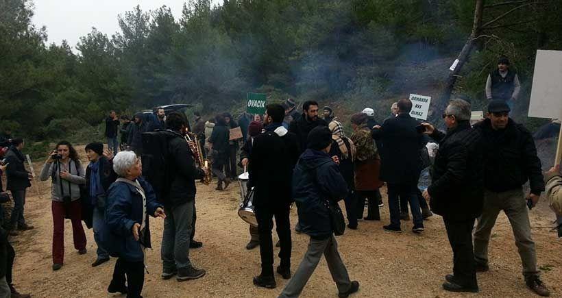 Urla'da halk tepkisi, ağaç katliamını şimdilik durdurdu