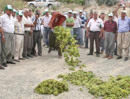 Köy meydanında 'üzüm' protestosu