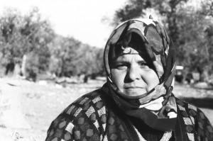 Sermaye gözünü zeytinliklere dikti/Hasan Cengiz Yazar*