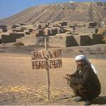 Toprak, geçim ve seçim /  Abdullah Aysu